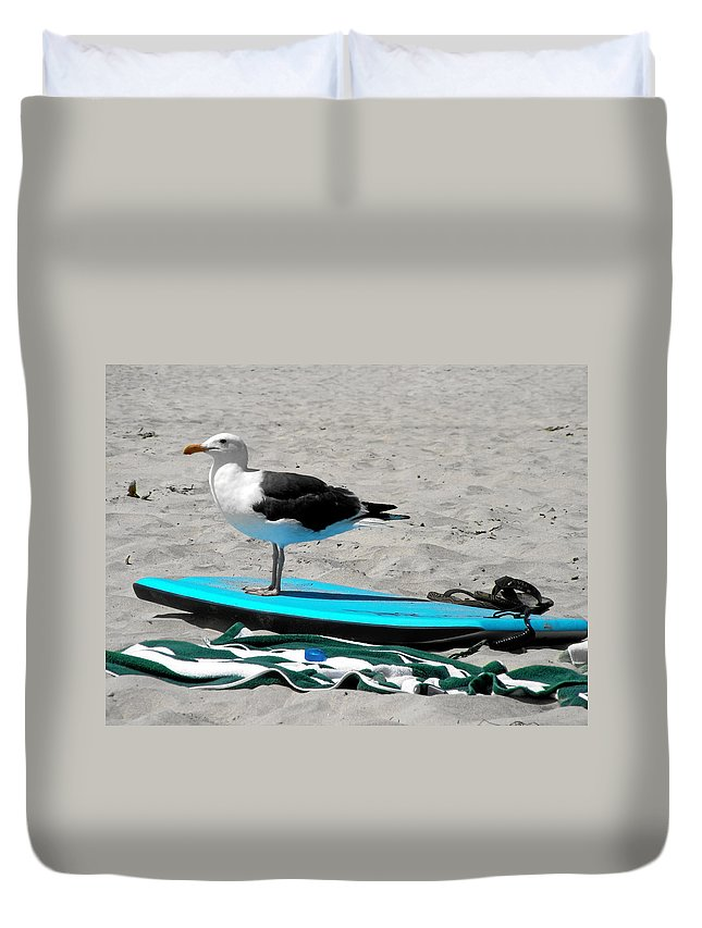 Bird Duvet Cover featuring the photograph Seagull On A Surfboard by Christine Till