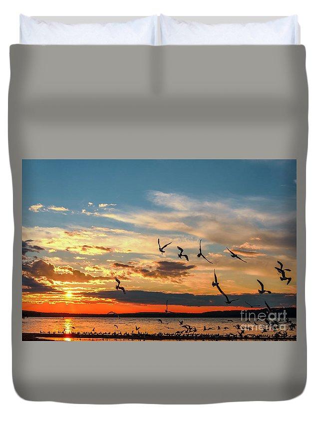 Saskatchewan Landscape Duvet Cover featuring the photograph Seagulls At Sunset by Viktor Birkus
