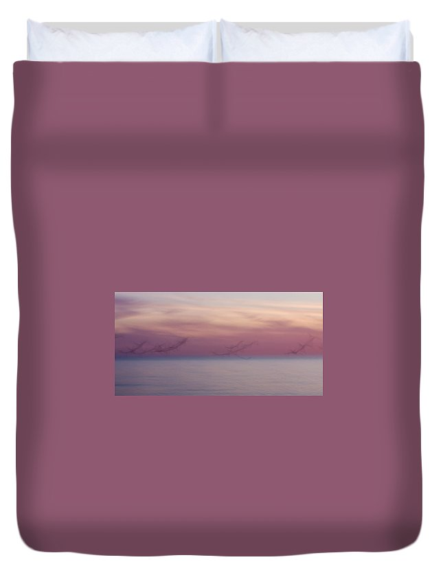 3scape Duvet Cover featuring the photograph Seagulls In Motion by Adam Romanowicz