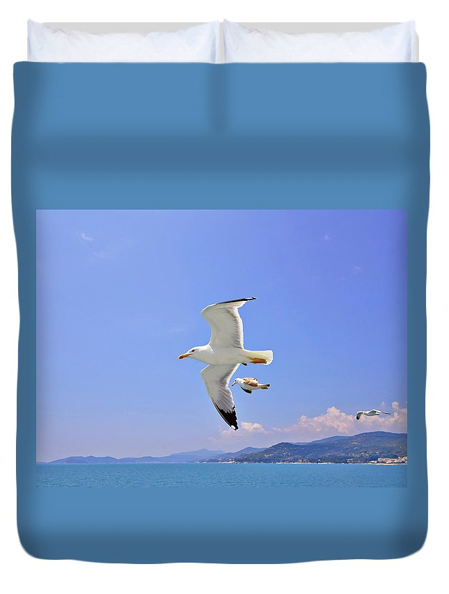 Bird Duvet Cover featuring the photograph Seagulls Over Blue Sea by Jarno Holappa