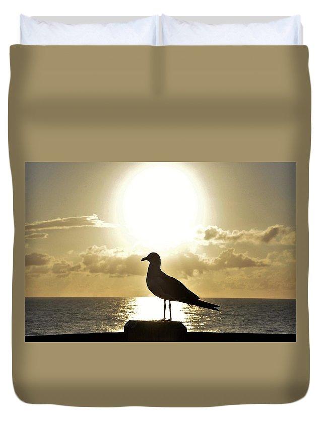 Sea Bird Duvet Cover featuring the photograph Seagull's Sunrise Silhouette by Sally Falkenhagen