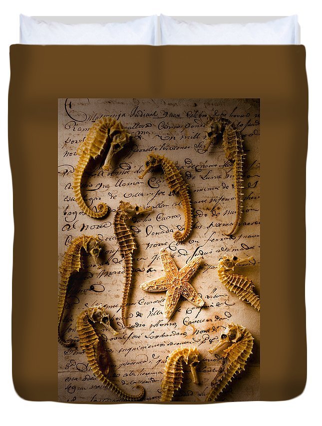 Seahorses Starfish Old Letter Words Duvet Cover featuring the photograph Seahorses And Starfish On Old Letter by Garry Gay