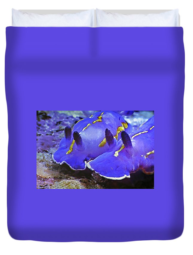 Ocean Duvet Cover featuring the photograph Sealife Underwater Snails by Christine Till