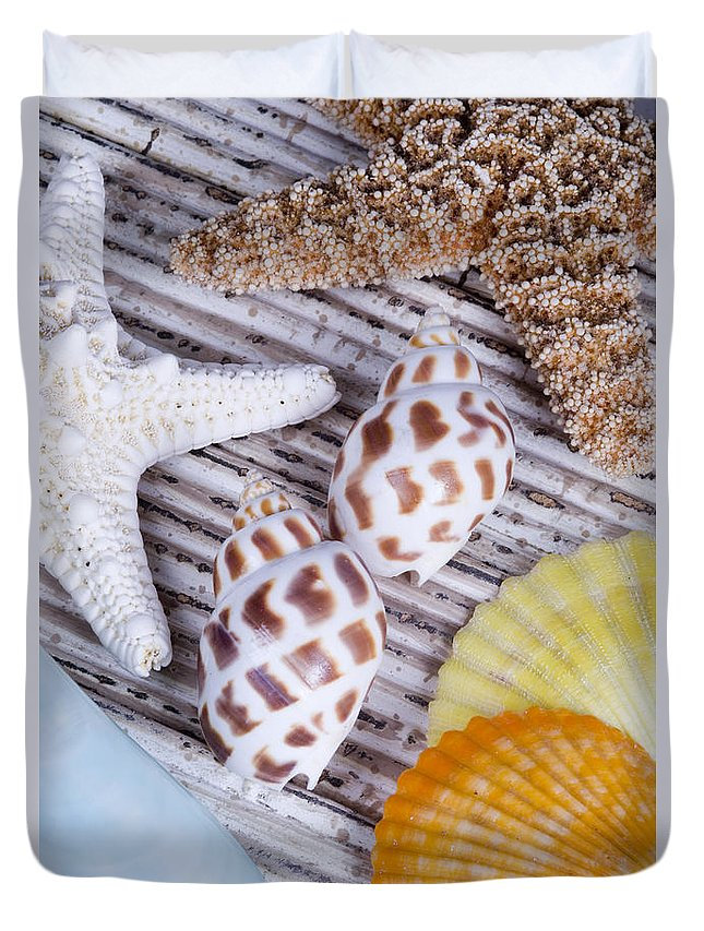 Assortment Duvet Cover featuring the photograph Seashells And Starfish by Bill Brennan - Printscapes
