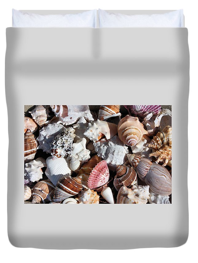 Seashells Duvet Cover featuring the photograph Seashells by Kristin Elmquist