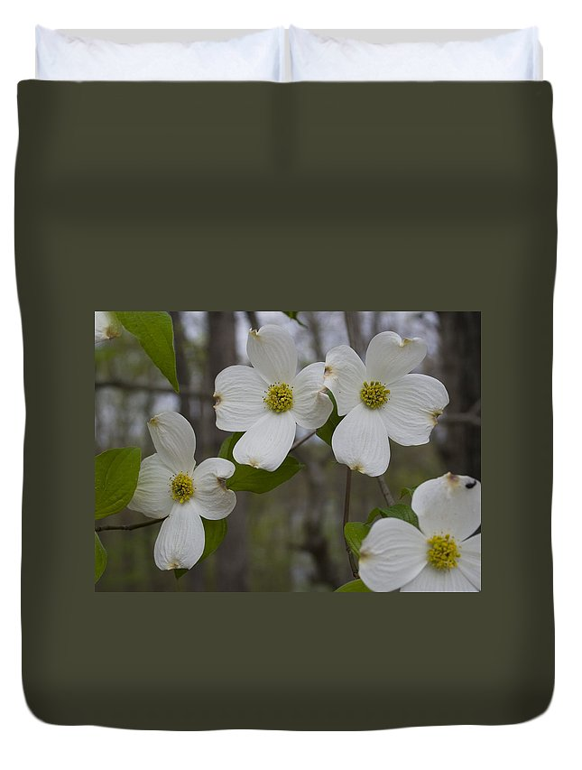 Flower Duvet Cover featuring the photograph Season Of Dogwood by Andrei Shliakhau