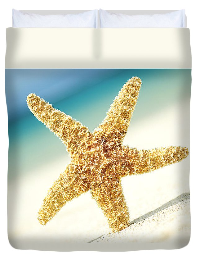 28-csm0003 Duvet Cover featuring the photograph Seastar On Beach by Mary Van de Ven - Printscapes