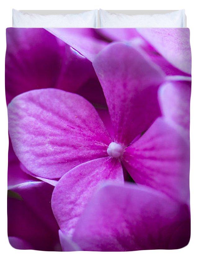 Macro Duvet Cover featuring the photograph Seattle Summer Flowers by Matt McDonald