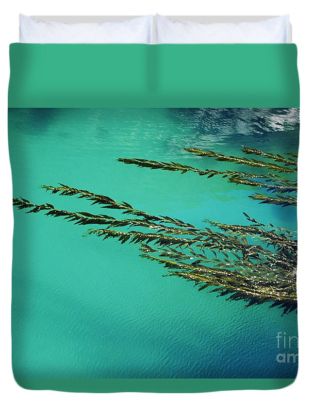 Abstract Duvet Cover featuring the photograph Seaweed Patterns by Larry Dale Gordon - Printscapes