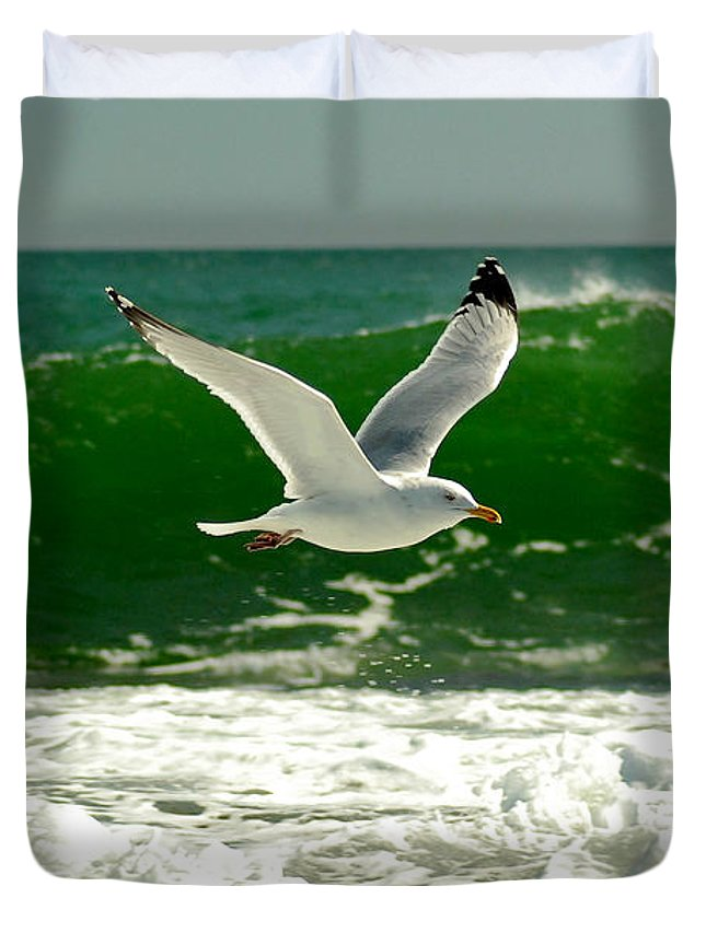 Sea Gull Duvet Cover featuring the photograph See Gull by Greg Fortier