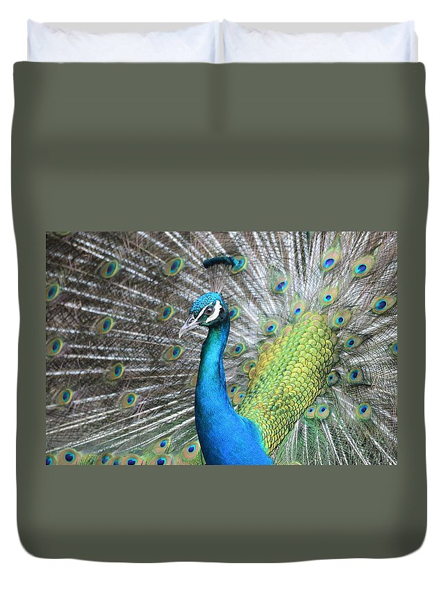 Peacocks Duvet Cover featuring the photograph See Me by Jewels Blake Hamrick