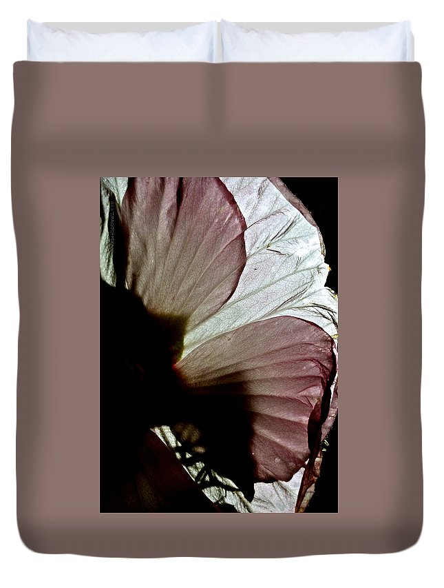 Sunlight Duvet Cover featuring the photograph I Could Be Butterfly Wings Hibiscus by Kathy Barney