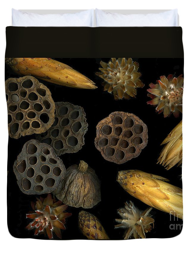 Pods Duvet Cover featuring the photograph Seeds And Pods by Christian Slanec