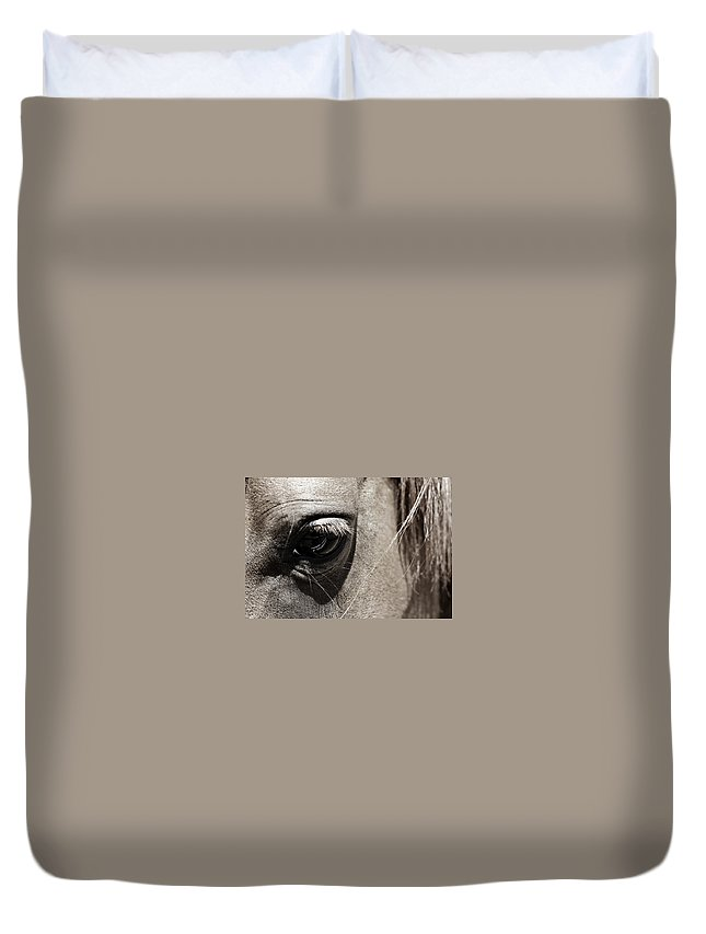 Americana Duvet Cover featuring the photograph Stillness In The Eye Of A Horse by Marilyn Hunt