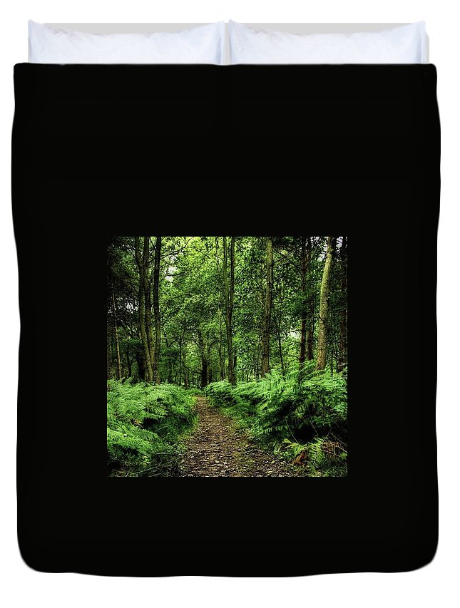 Nature Duvet Cover featuring the photograph Seeswood, Nuneaton by John Edwards