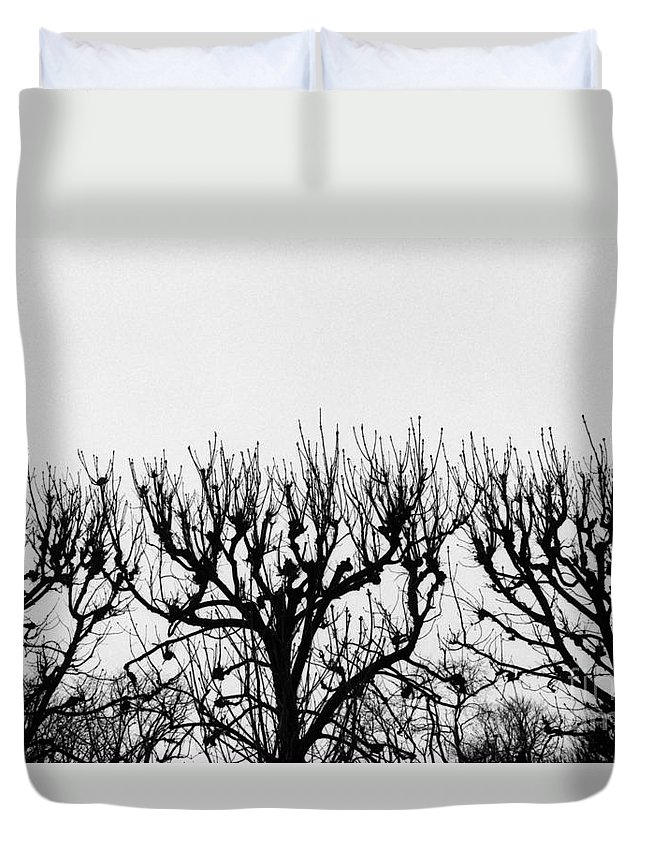 Photography Duvet Cover featuring the photograph Seine River Trees by Tamarra Tamarra