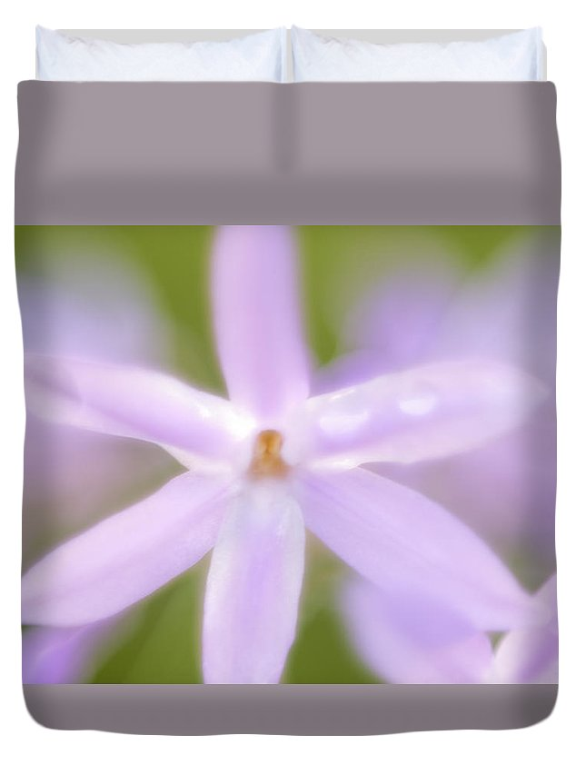 Petalos Duvet Cover featuring the photograph Seis Petalos by Francisco Sogel