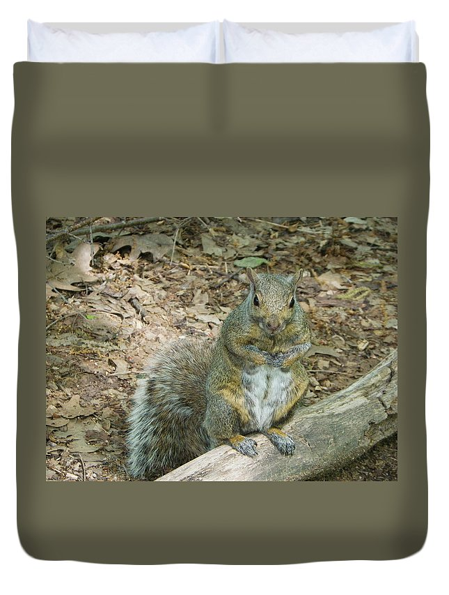 Nature Duvet Cover featuring the photograph Self Appointed Greeter by Peggy King