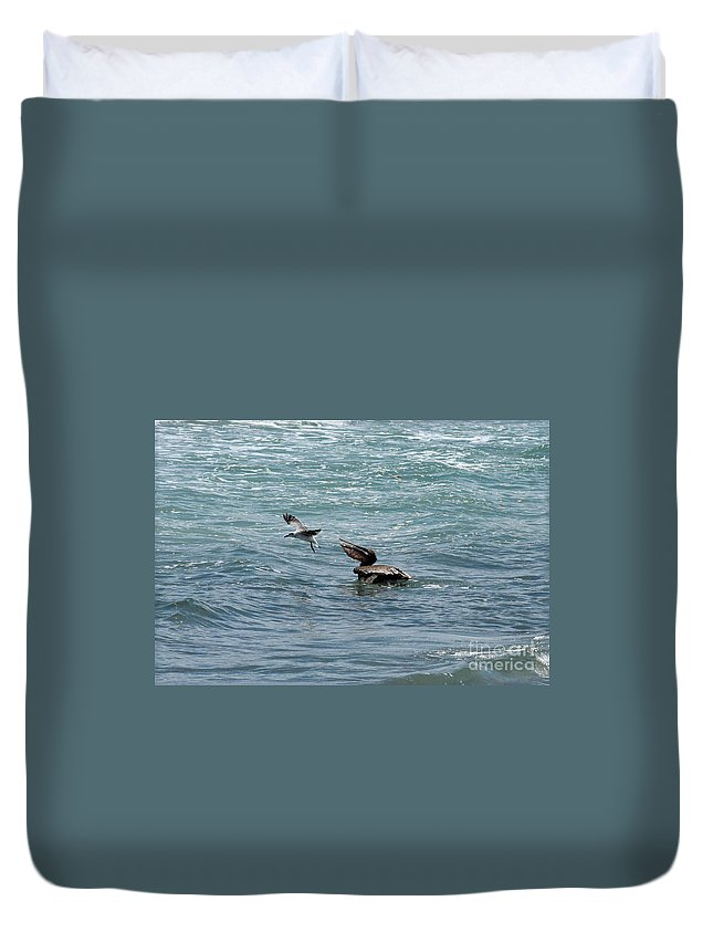 Brown Pelican Duvet Cover featuring the photograph Selfish by William Tasker