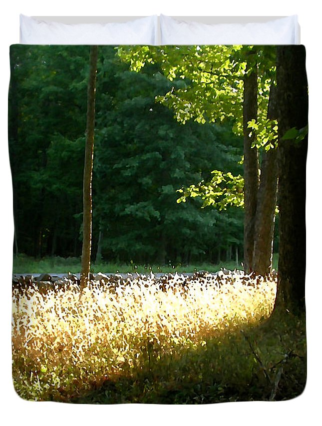 Nature Duvet Cover featuring the painting Setting Sunlight by Paul Sachtleben