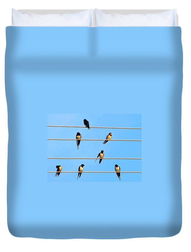 Swallow Duvet Cover featuring the photograph Seven Swallows by Ana Maria Edulescu