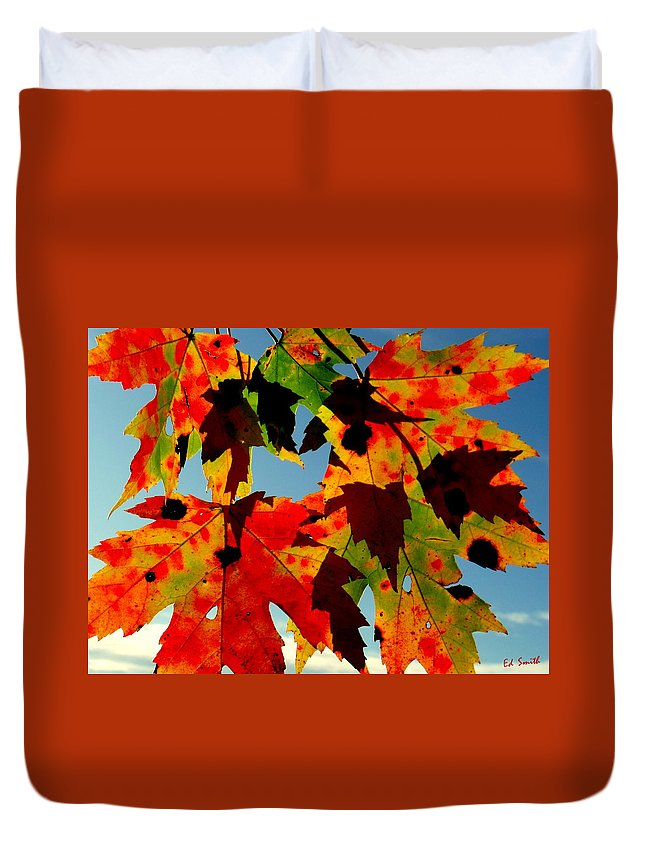 Shadow Play Duvet Cover featuring the photograph Shadow Play by Edward Smith