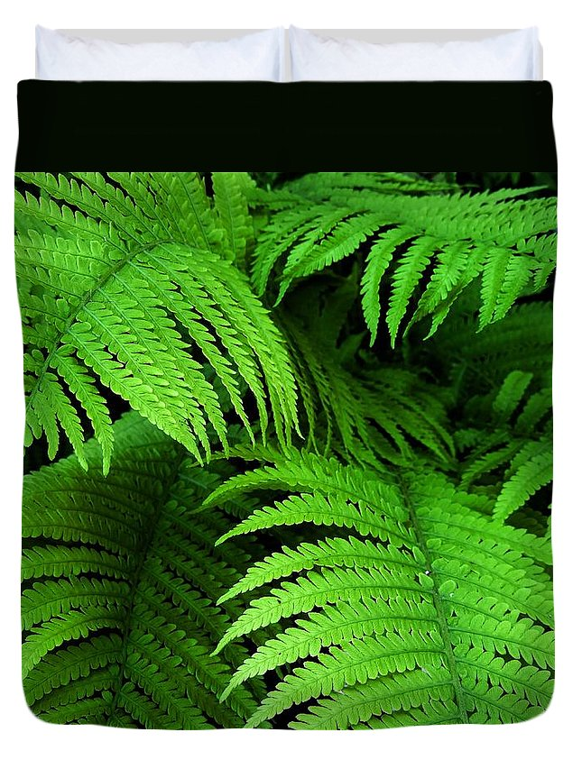 Ferns Duvet Cover featuring the photograph Shadowy Fern by Jennie Perry