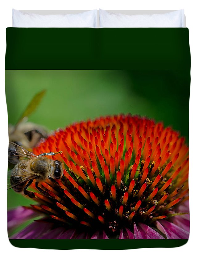 Coneflower Duvet Cover featuring the photograph Sharing The Wealth by Linda Howes