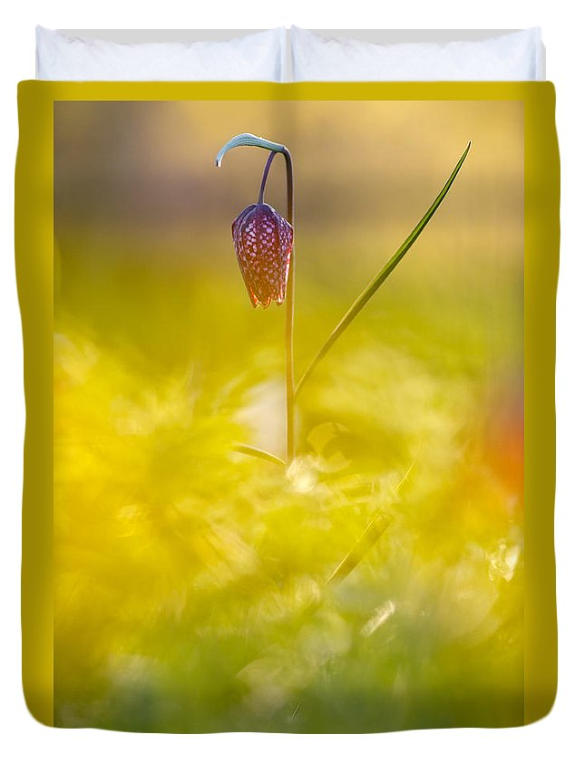 Fritillaria Meleagris Duvet Cover featuring the photograph She Comes In Colours by Roeselien Raimond