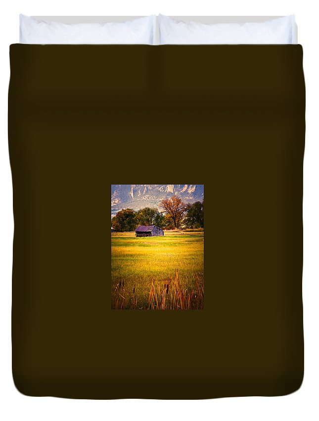 Shed Duvet Cover featuring the photograph Shed In Sunlight by Marilyn Hunt