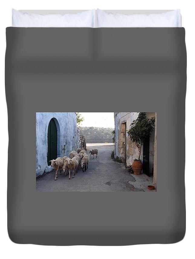 Lehtokukka Duvet Cover featuring the photograph Sheeps Of Crete by Jouko Lehto