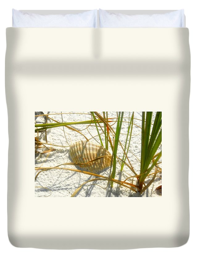 Sea Shell Duvet Cover featuring the photograph Shell And Beach by David Lee Thompson