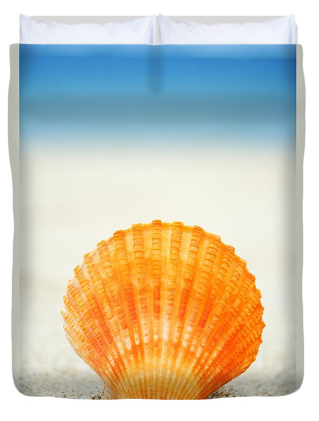 Afternoon Duvet Cover featuring the photograph Shell On Beach by Mary Van de Ven - Printscapes