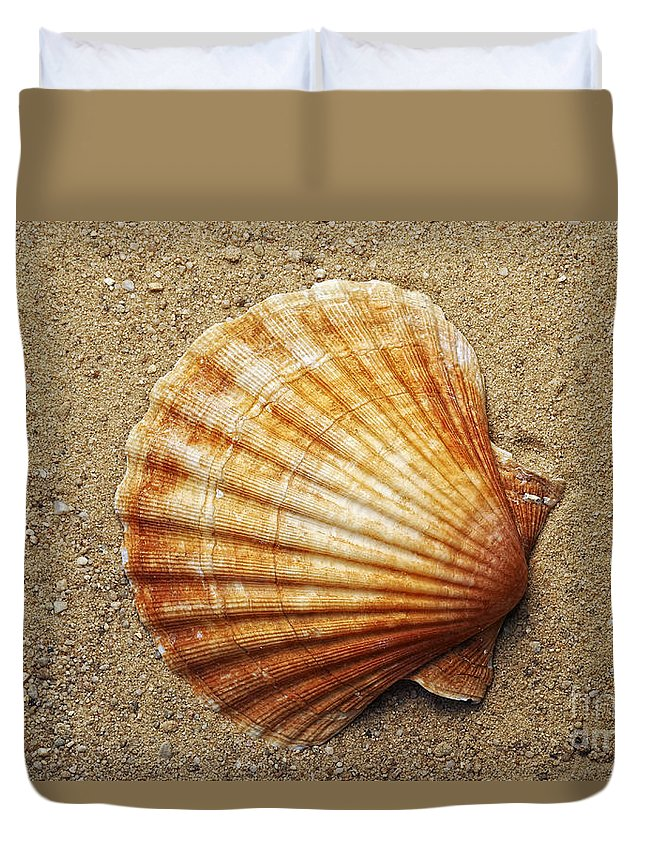 Shell Duvet Cover featuring the photograph Shell On The Sand by Michal Boubin