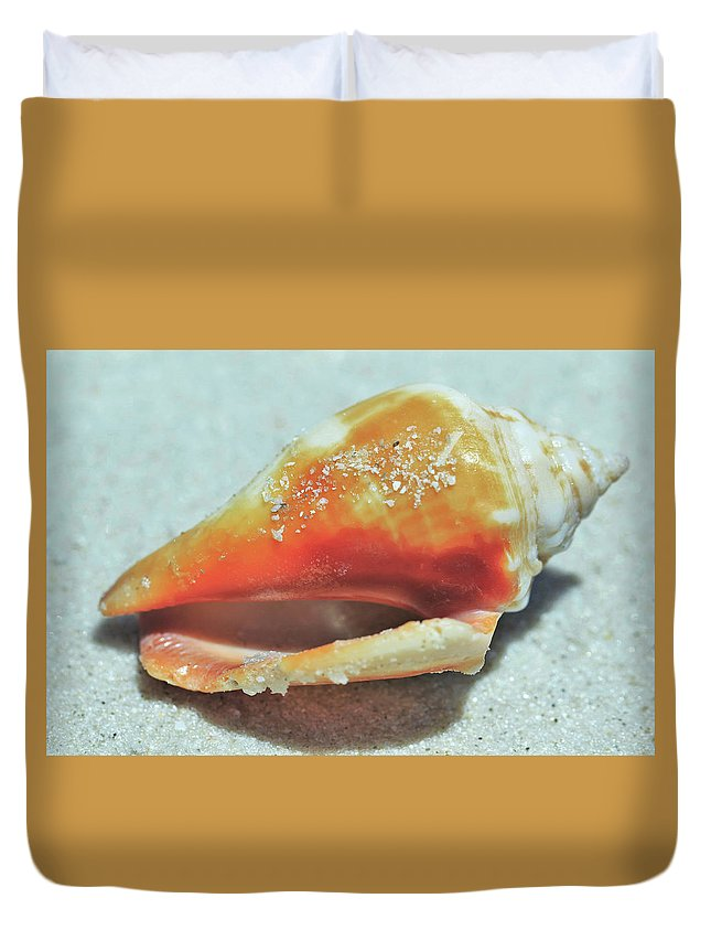 Seashell Duvet Cover featuring the photograph Shell Shocked by Luke Dedic