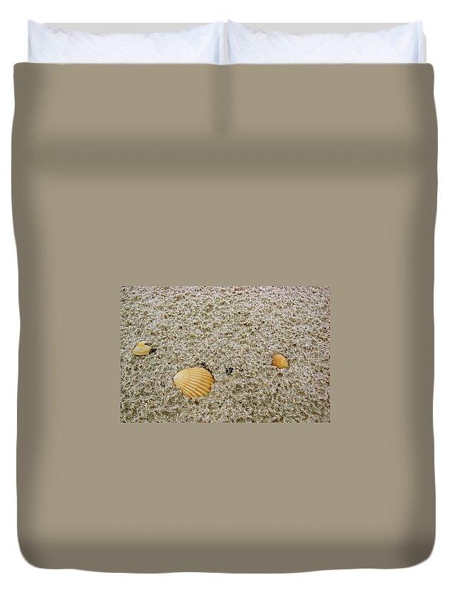 Port Duvet Cover featuring the photograph Shells In The Sand by Brett Winn