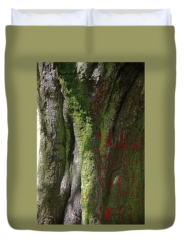 Bradford Duvet Cover featuring the photograph Shire by Jez C Self