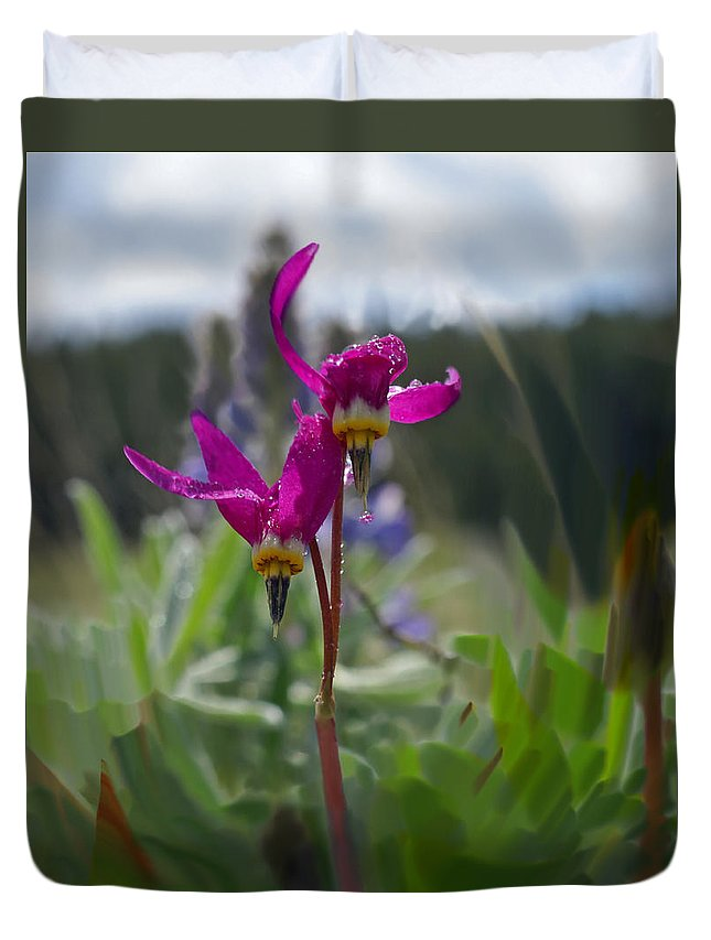 Wild Flower Duvet Cover featuring the photograph Shooting Star by Heather Coen