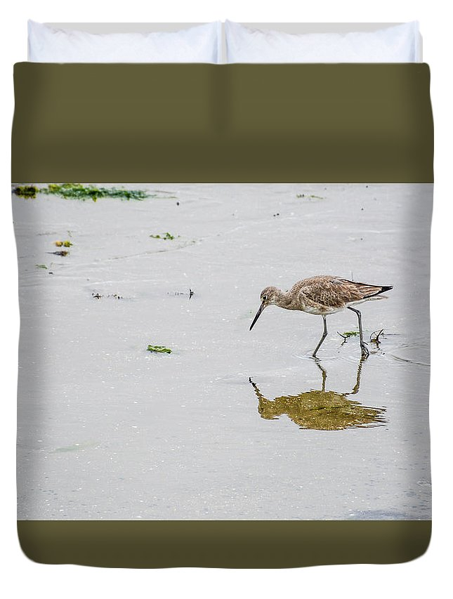 Avian Duvet Cover featuring the photograph Short-billed Dowitcher #4 by Tim Bond