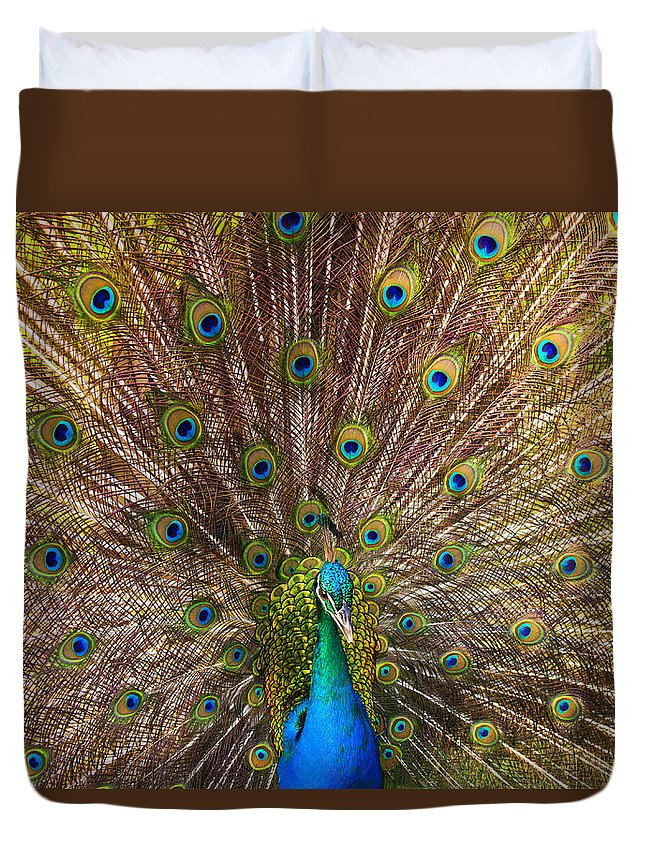 Peacock Duvet Cover featuring the photograph Showing Your Colors by Mike Dawson