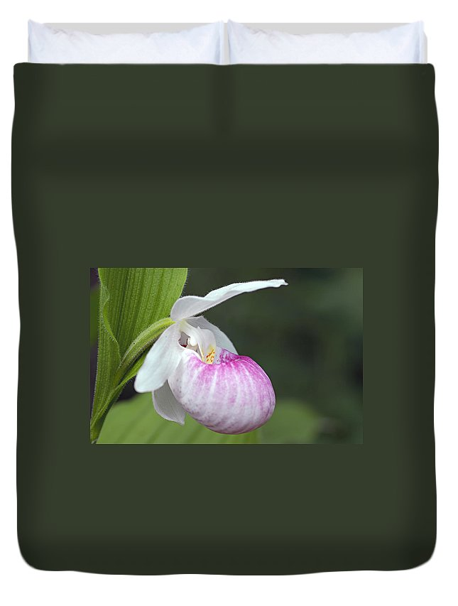 Showy Ladyslipper Duvet Cover featuring the photograph Showy Ladyslipper by Larry Ricker