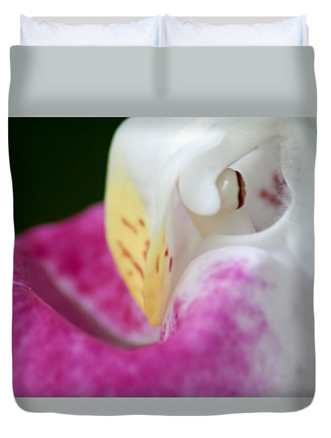 Showy Ladyslipper Duvet Cover featuring the photograph Showy Ladyslipper Up Close And Personal by Larry Ricker