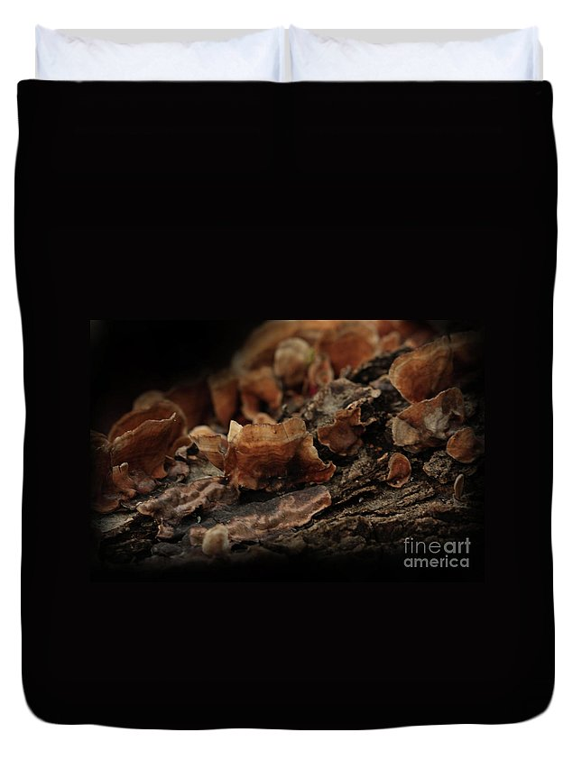 Mushroom Photography Duvet Cover featuring the photograph Shrooms by Kim Henderson