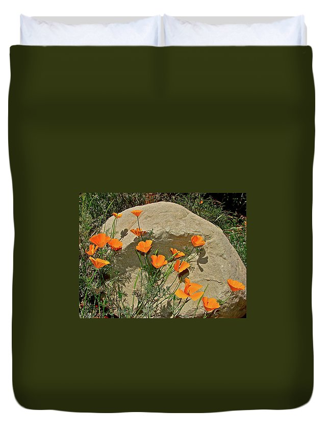 Poppy Duvet Cover featuring the photograph Signs Of Spring by Diana Hatcher