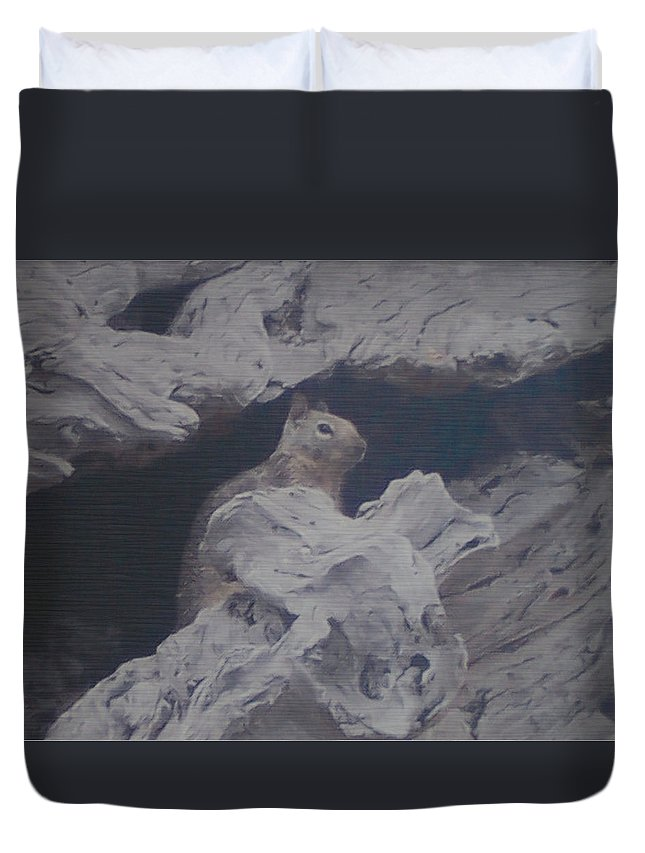 Squirrel Duvet Cover featuring the photograph Silent Observer by Pharris Art