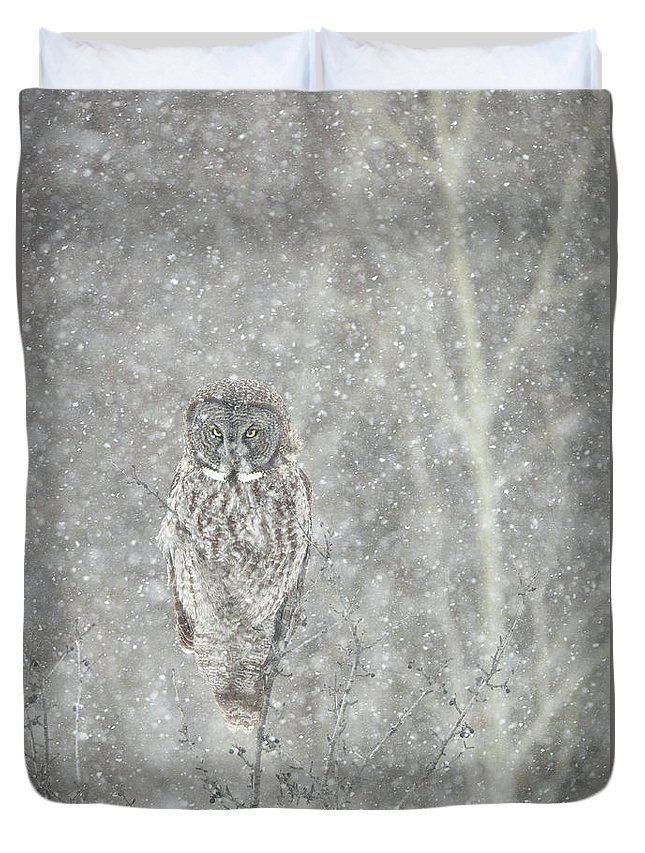 Owl Duvet Cover featuring the photograph Silent Snowfall Portrait II by Everet Regal