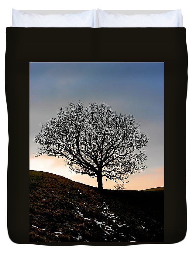 Tree Duvet Cover featuring the photograph Silhouette of a tree on a winter day by Christine Till