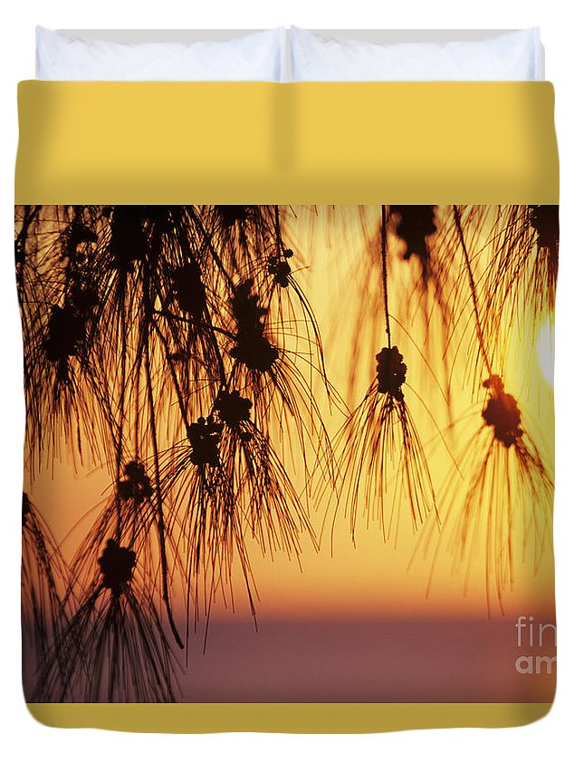 Beautiful Duvet Cover featuring the photograph Silhouettes by Rita Ariyoshi - Printscapes