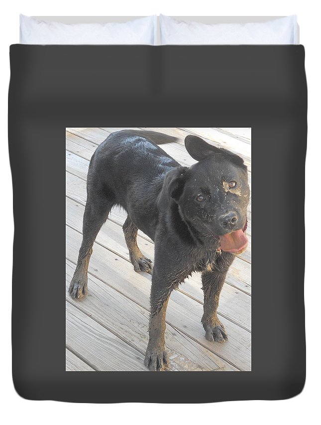 Duvet Cover featuring the photograph Silly Dog by Breat Johnson