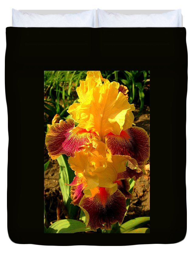 Flower Duvet Cover featuring the photograph Silly Frilly Dragon by Erin Rednour